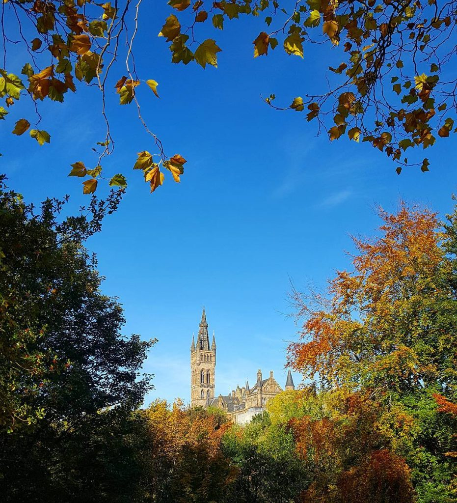 Glasgow University poking through the leaves into the beautiful bluehellip